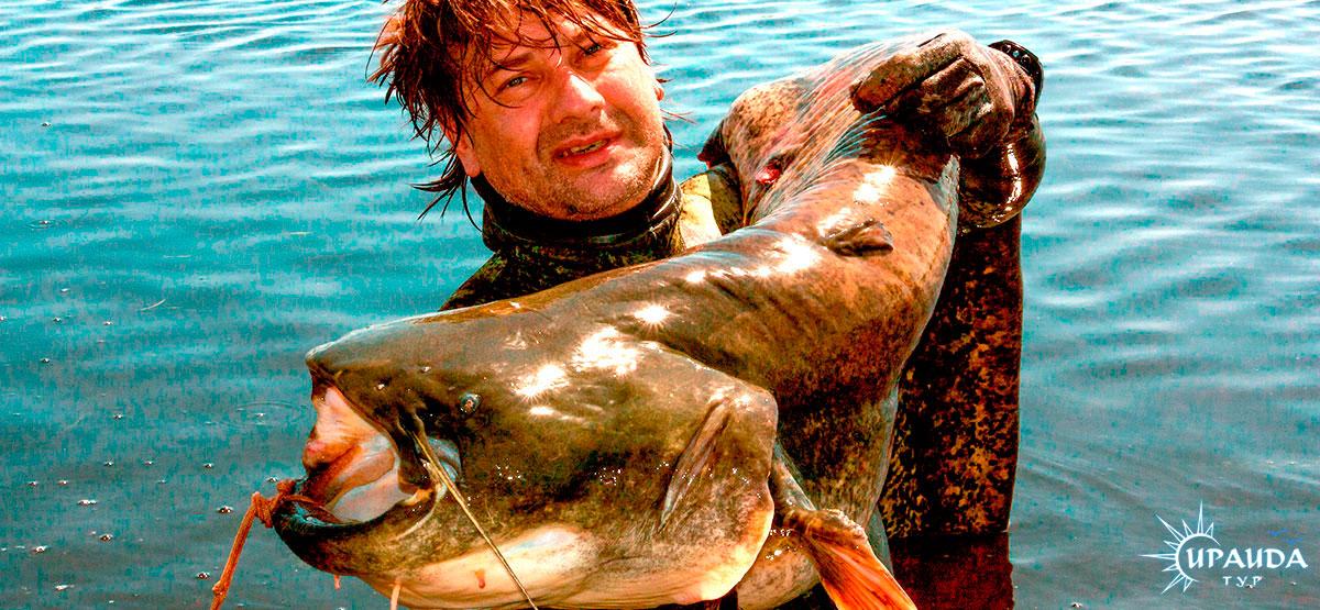 организация рыболовной базы